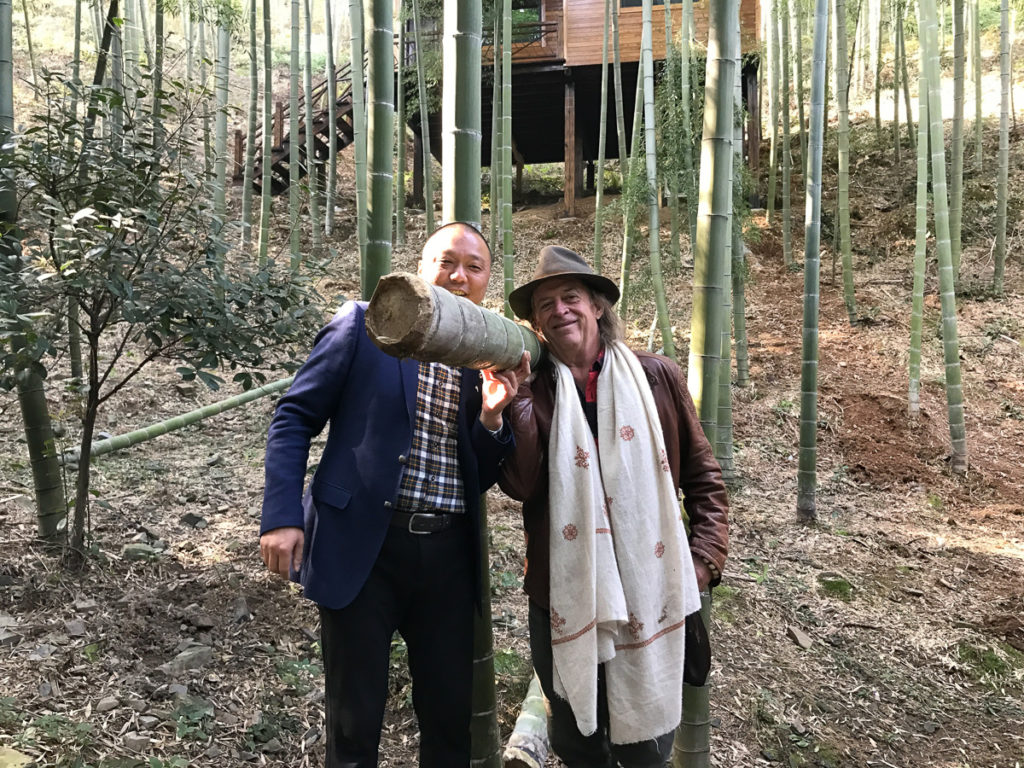 In a Chinese bamboo grove
