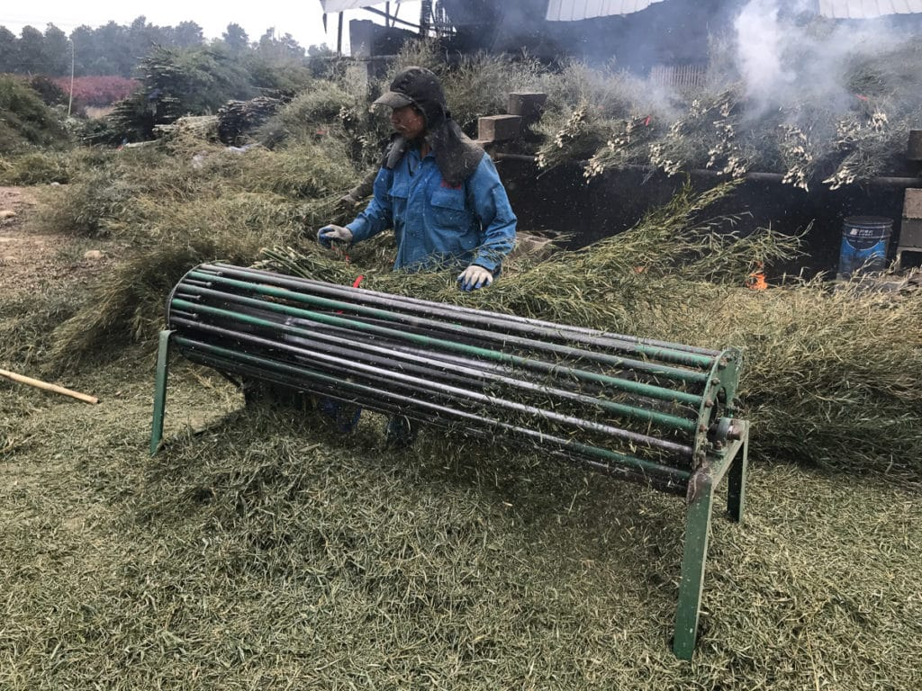 Bamboo chipper in China
